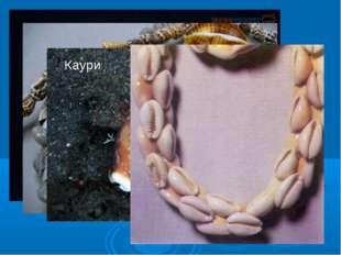 Раковины используются как сувениры и поделочный материал. В старину раковины