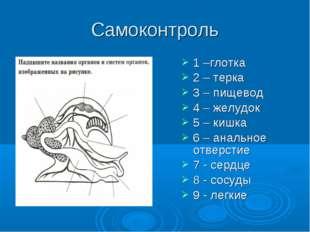 Самоконтроль 1 –глотка 2 – терка 3 – пищевод 4 – желудок 5 – кишка 6 – анальн
