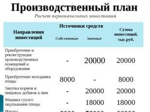 Производственный план Направления инвестицийИсточники средствСумма инвестиц