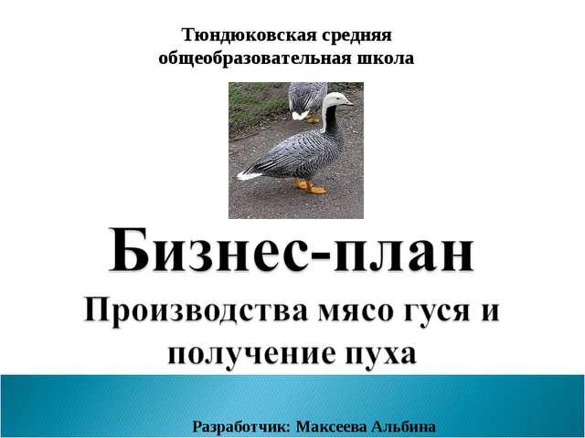 Тюндюковская средняя общеобразовательная школа Разработчик: Максеева Альбина