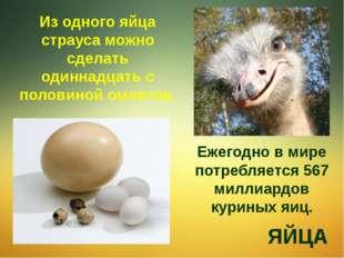 Из одного яйца страуса можно сделать одиннадцать с половиной омлетов. ЯЙЦА Еж