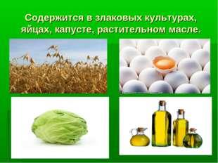 Содержится в злаковых культурах, яйцах, капусте, растительном масле.