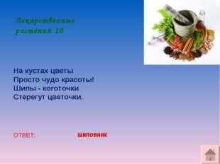 Лекарственные растения 10 На кустах цветы Просто чудо красоты! Шипы - коготоч