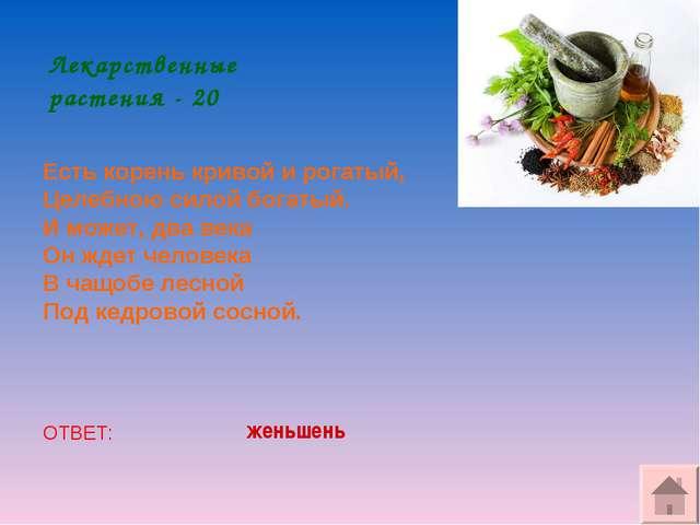 Лекарственные растения - 20 Есть корень кривой и рогатый, Целебною силой бога...