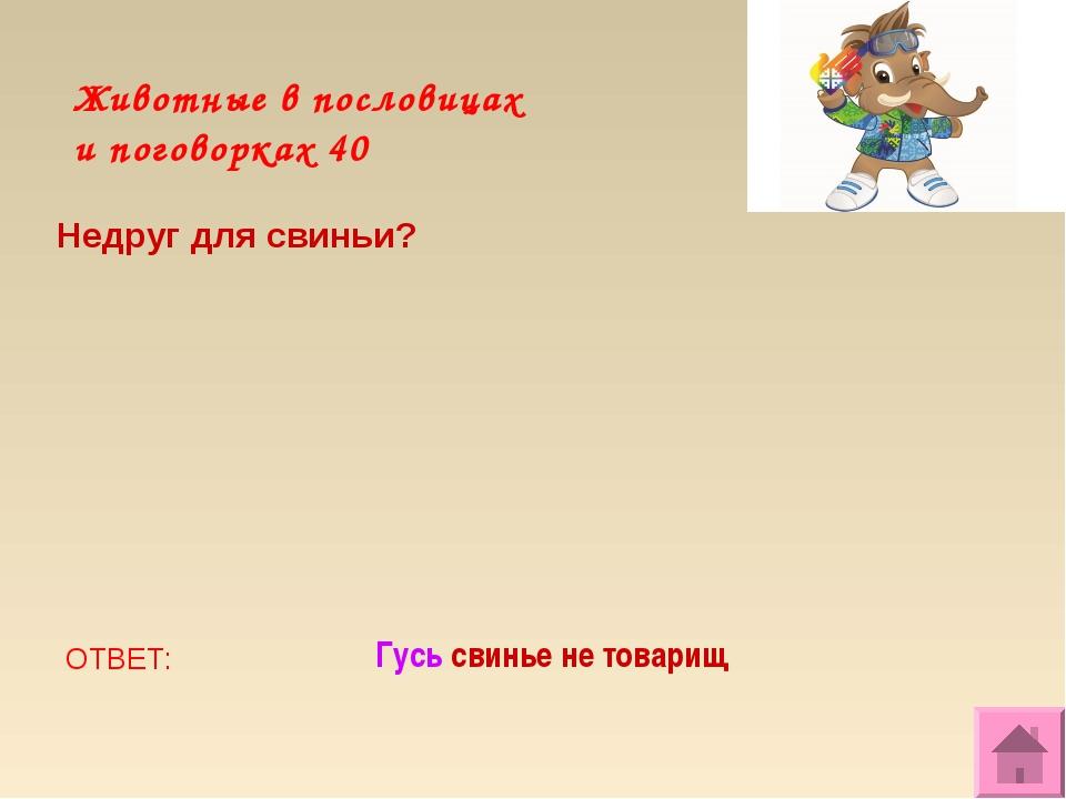 Животные в пословицах и поговорках 40 Недруг для свиньи? ОТВЕТ: Гусь свинье н...