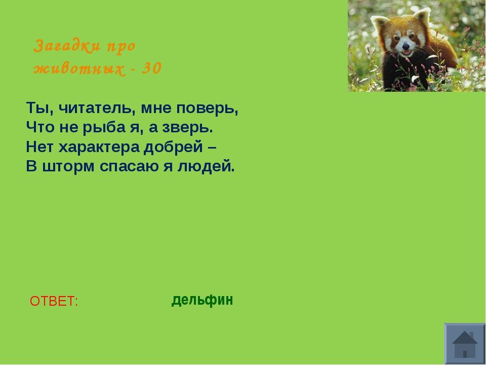 Загадки про животных - 30 Ты, читатель, мне поверь, Что не рыба я, а зверь. Н...