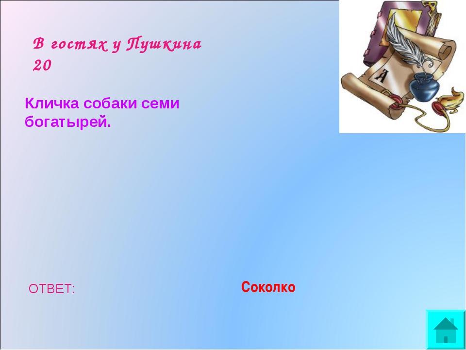 В гостях у Пушкина 20 Кличка собаки семи богатырей. ОТВЕТ: Соколко