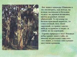 Вот пошел однажды Шишкин в лес посмотреть, как всегда, на всякие маленькие и