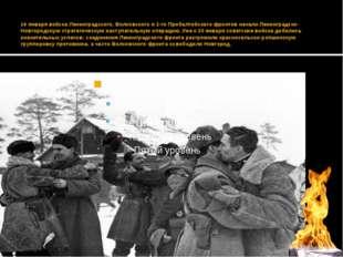 14 января войска Ленинградского, Волховского и 2-го Прибалтийского фронтов н