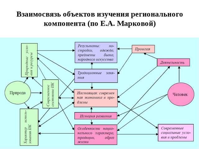 Взаимосвязь объектов изучения регионального компонента (по Е.А. Марковой)