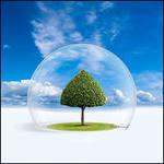 F:\Documents and Settings\админ\Рабочий стол\по экологии к конференции и открытому уроку\i (9).jpg