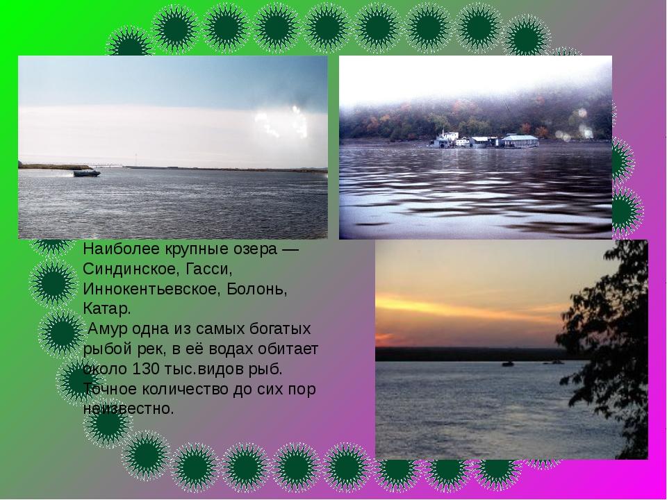 Наиболее крупные озера — Синдинское, Гасси, Иннокентьевское, Болонь, Катар. А...