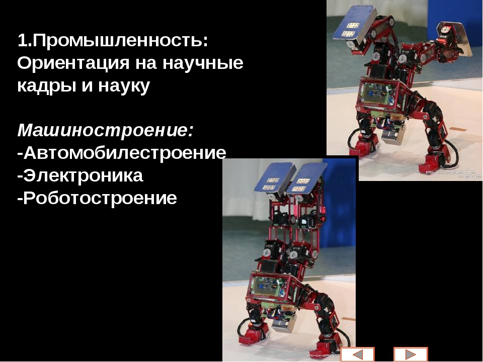 1.Промышленность: Ориентация на научные кадры и науку Машиностроение: -Автомо...