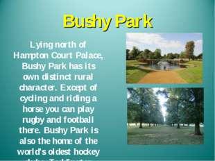 Bushy Park Lying north of Hampton Court Palace, Bushy Park has its own distin