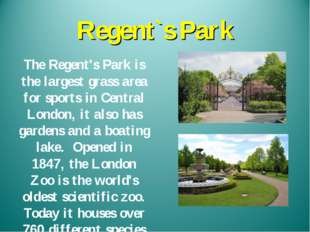 Regent`s Park The Regent's Park is the largest grass area for sports in Centr