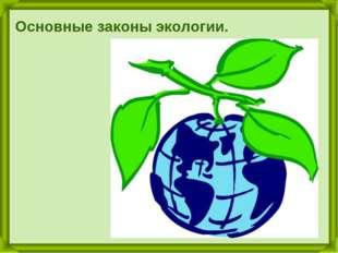 Основные законы экологии.