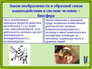 Закон необратимости и обратной связи взаимодействия в системе человек – биосф