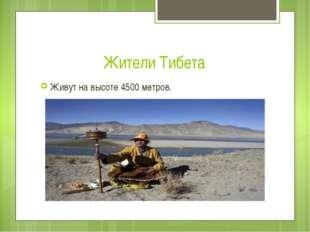 Жители Тибета Живут на высоте 4500 метров.