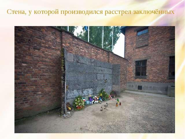Стена, у которой производился расстрел заключённых