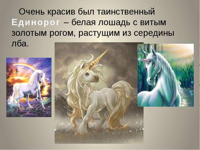 Очень красив был таинственный Единорог – белая лошадь с витым золотым рогом,...