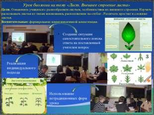 Открытый урок биологии Павловой С.Ю. 2014 год на тему: многообразие земноводн