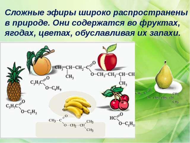 Сложные эфиры широко распространены в природе. Они содержатся во фруктах, яго...