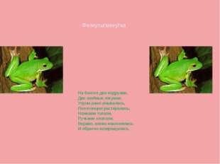 Физкультминутка На болоте две подружки, Две зелёные лягушки. Утром рано умыва