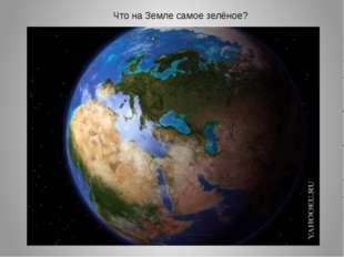Что на Земле самое зелёное?