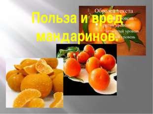 Польза и вред мандаринов.