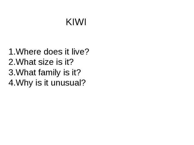 KIWI 1.Where does it live? 2.What size is it? 3.What family is it? 4.Why is i...