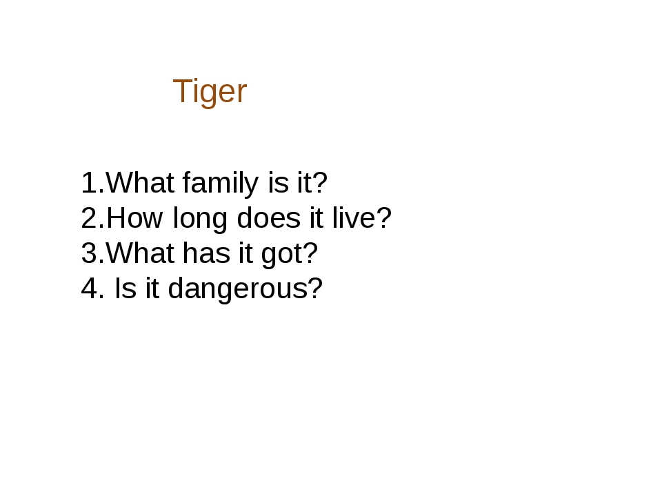 Tiger 1.What family is it? 2.How long does it live? 3.What has it got? 4. Is...