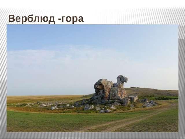 Верблюд -гора