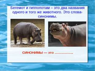 Бегемот и гиппопотам – это два названия одного и того же животного. Это слова