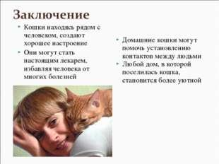 Кошки находясь рядом с человеком, создают хорошее настроение Они могут стать