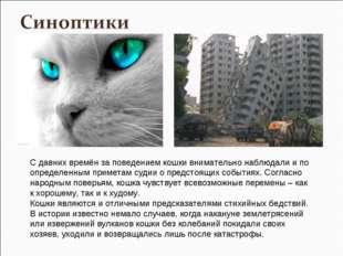 С давних времён за поведением кошки внимательно наблюдали и по определенным п