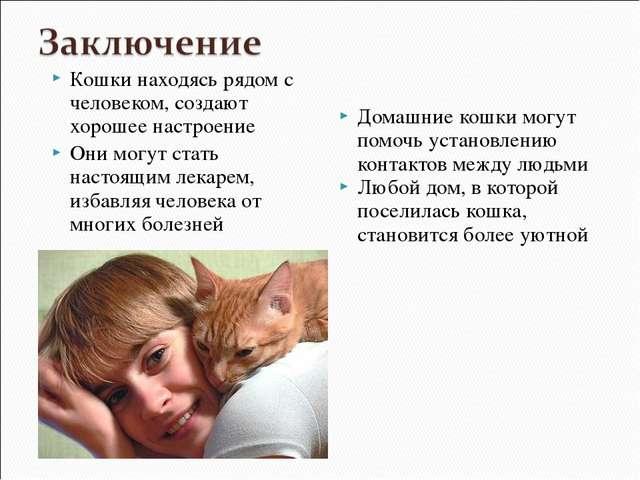 Кошки находясь рядом с человеком, создают хорошее настроение Они могут стать...