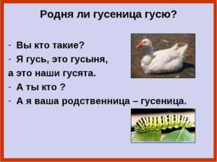 Родня ли гусеница гусю? Вы кто такие? Я гусь, это гусыня, а это наши гусята.