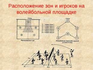 Расположение зон и игроков на волейбольной площадке