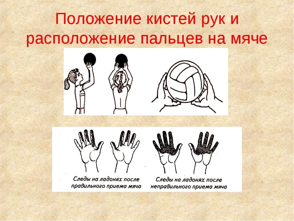 Положение кистей рук и расположение пальцев на мяче