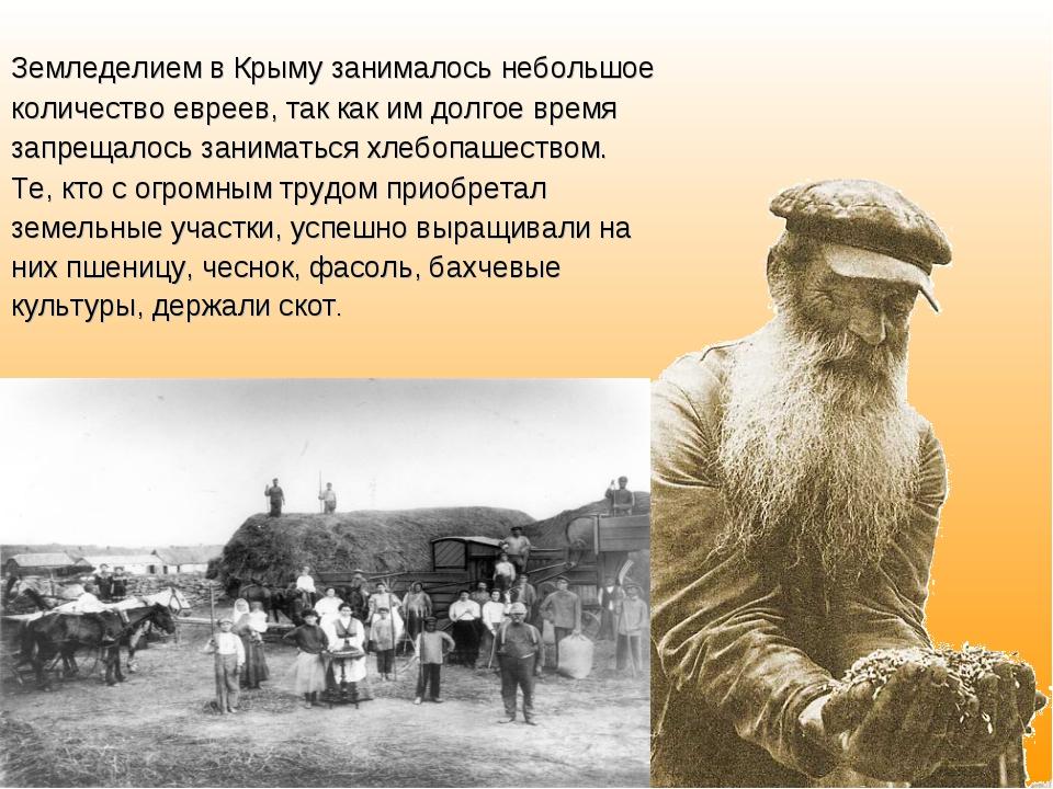 Земледелием в Крыму занималось небольшое количество евреев, так как им долгое...