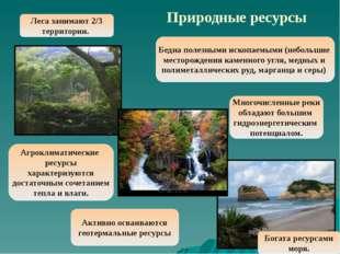 Природные ресурсы Бедна полезными ископаемыми (небольшие месторождения каменн