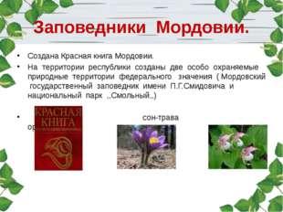Заповедники Мордовии. Создана Красная книга Мордовии. На территории республик