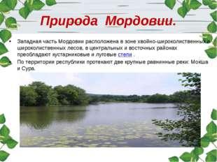 Природа Мордовии. Западная часть Мордовии расположена в зоне хвойно-широколис