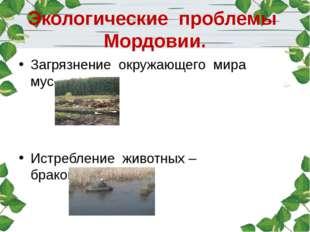 Экологические проблемы Мордовии. Загрязнение окружающего мира мусором. Истреб