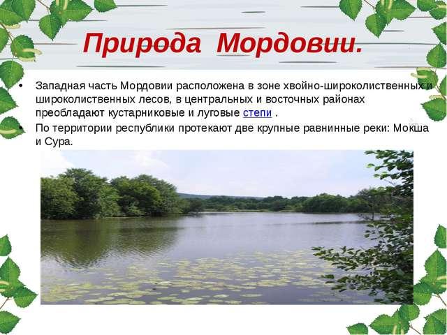 Природа Мордовии. Западная часть Мордовии расположена в зоне хвойно-широколис...
