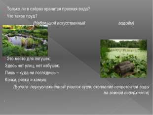 Только ли в озёрах хранится пресная вода? Что такое пруд? (Небольшой искусст