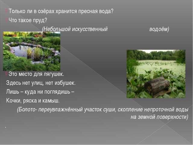 Только ли в озёрах хранится пресная вода? Что такое пруд? (Небольшой искусст...