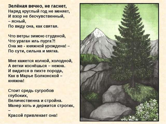 Зелёная вечно, не гаснет, Наряд круглый год не меняет, И взор не бесчувстве...