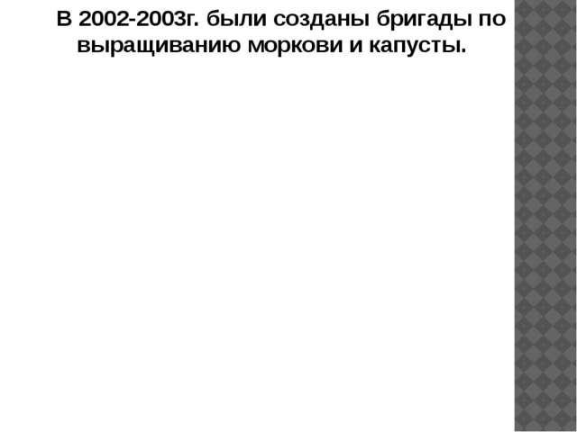 В 2002-2003г. были созданы бригады по выращиванию моркови и капусты.
