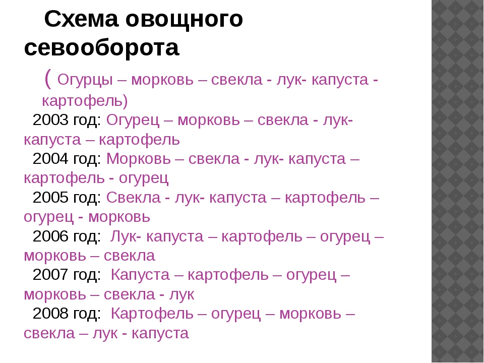 Схема овощного севооборота ( Огурцы – морковь – свекла - лук- капуста - карт...